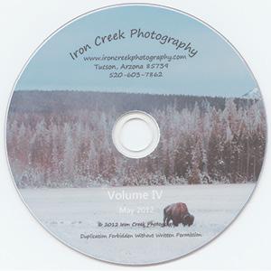 disk image2.tif