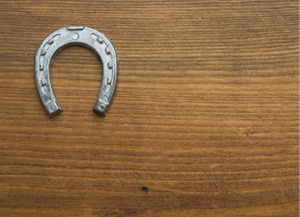 horseshoe.jpg