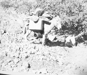 early mining 004.tif