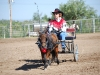 Southern Arizona Horse Expo_023