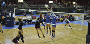 Ray Volleyball image002.jpg
