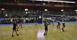 Ray Volleyball image011.jpg